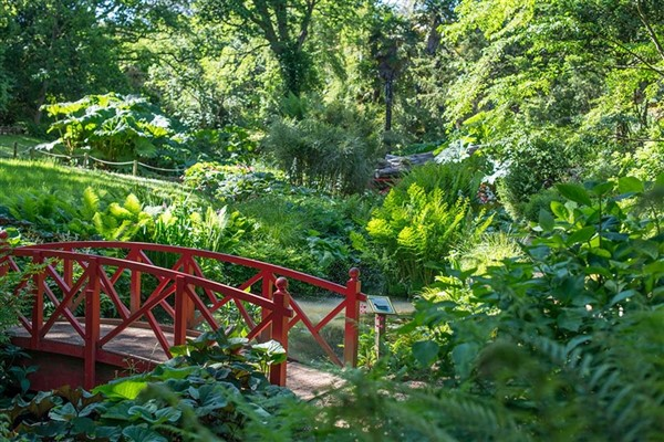West Bay & Abbotsbury Gardens