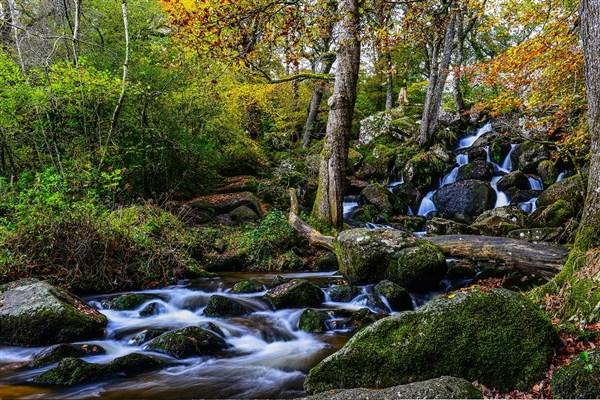 Becky Falls, Dartmoor