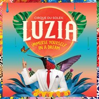 London Show-break : Cirque de Soliel - LUZIA