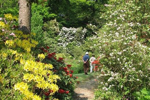 Minterne Gardens & Sherborne Town