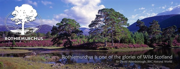 The Wild Scottish Highlands