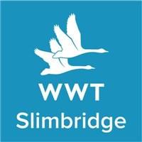 Slimbridge Wildfowl Trust