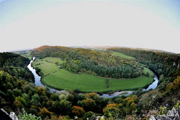 Wye Cruise & Forest of Dean Tour