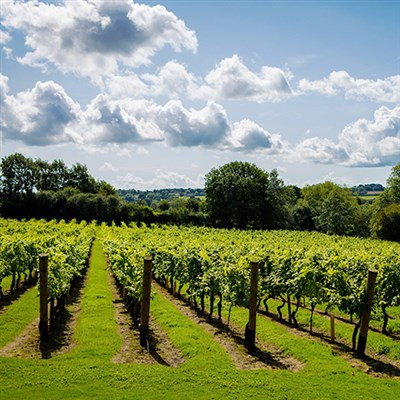 Kent - England's Tastiest County